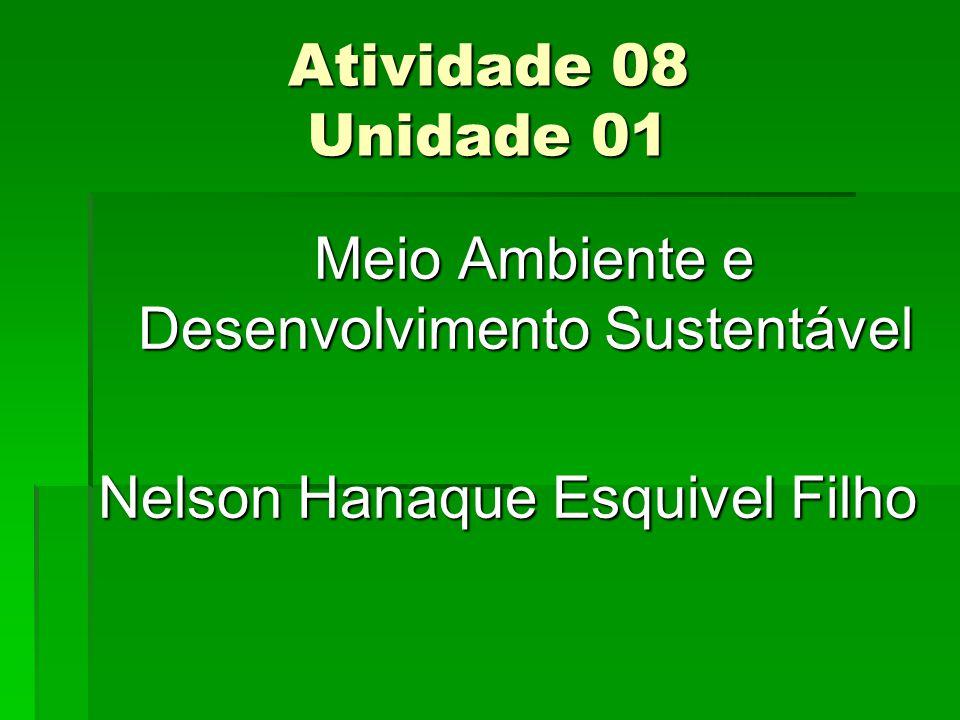Atividade 08 Unidade 01 Meio Ambiente e Desenvolvimento Sustentável Meio Ambiente e Desenvolvimento Sustentável Nelson Hanaque Esquivel Filho