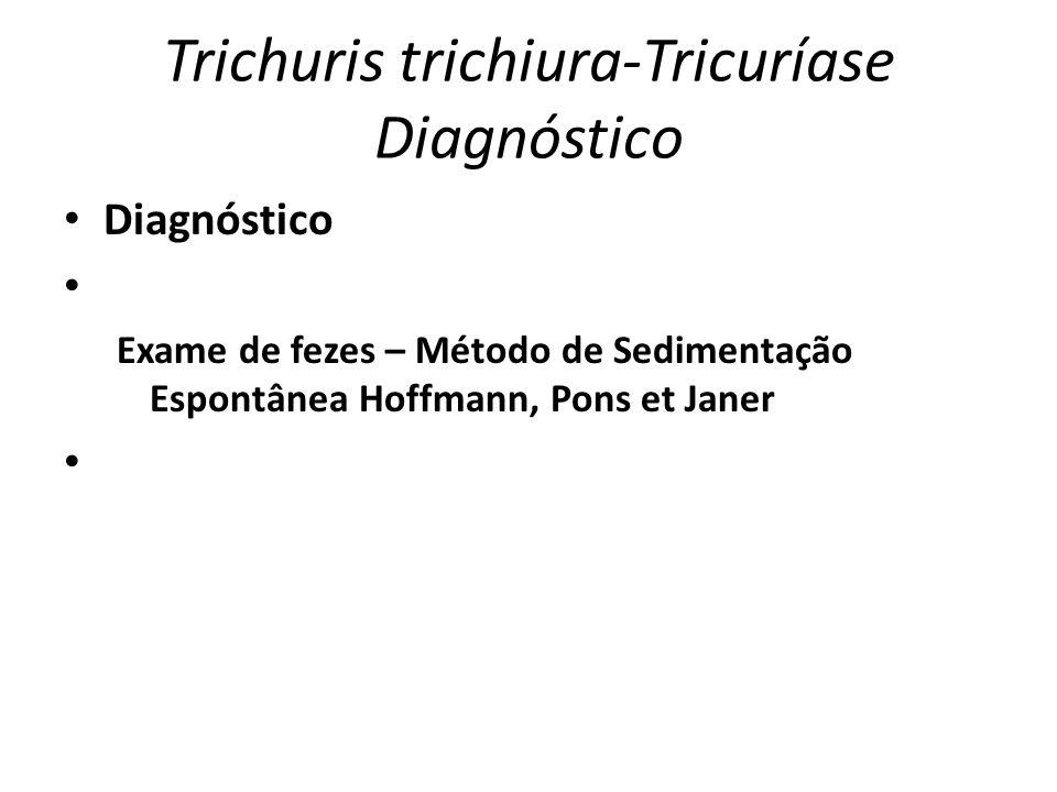 Trichuris trichiura-Tricuríase Diagnóstico Diagnóstico Exame de fezes – Método de Sedimentação Espontânea Hoffmann, Pons et Janer