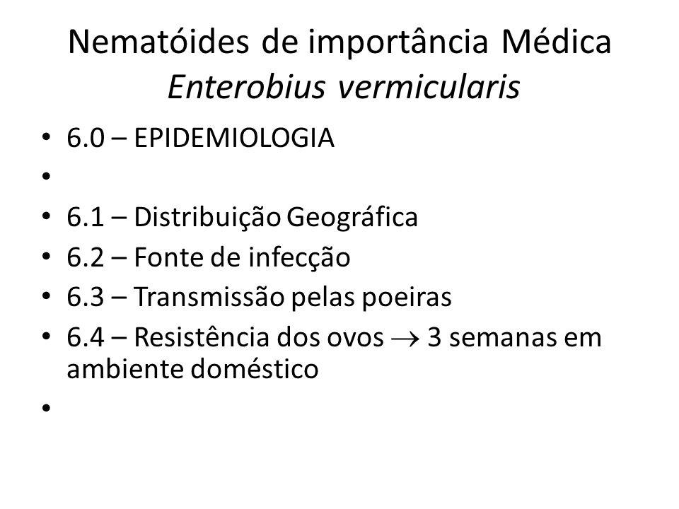 Nematóides de importância Médica Enterobius vermicularis 6.0 – EPIDEMIOLOGIA 6.1 – Distribuição Geográfica 6.2 – Fonte de infecção 6.3 – Transmissão p