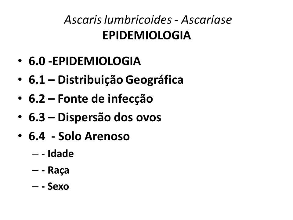 Ascaris lumbricoides - Ascaríase EPIDEMIOLOGIA 6.0 -EPIDEMIOLOGIA 6.1 – Distribuição Geográfica 6.2 – Fonte de infecção 6.3 – Dispersão dos ovos 6.4 -