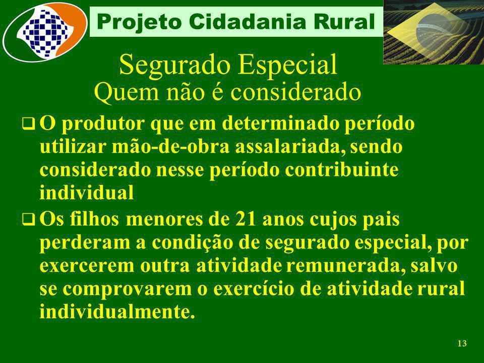 12 Projeto Cidadania Rural Segurado Especial Quem não é considerado A pessoa física, proprietária ou não, que explora atividade agropecuária ou pesque