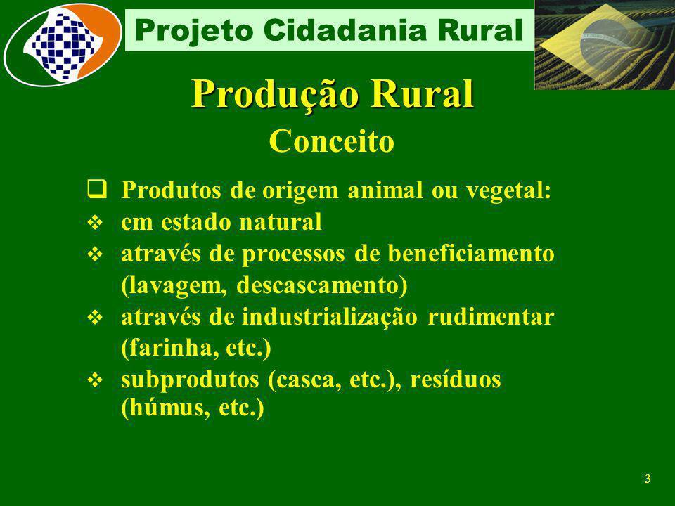 2 Projeto Cidadania Rural PROGRAMAÇÃO: MÓDULO I: CONCEITOS BÁSICOS (PRODUÇÃO/PRODUTO) SEGURADO ESPECIAL MÓDULO II: PRPF CONTRIBUINTE INDIVIDUAL CONSÓR