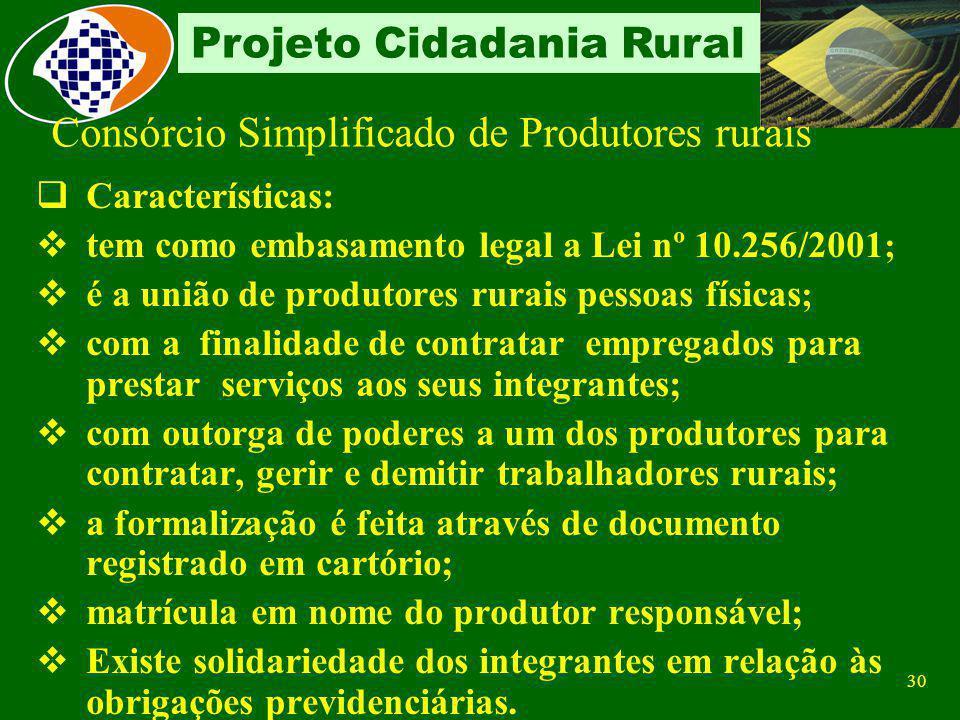 29 Projeto Cidadania Rural Consórcio Simplificado de Produtores rurais Conceito União de produtores rurais pessoas físicas com a finalidade de contrat
