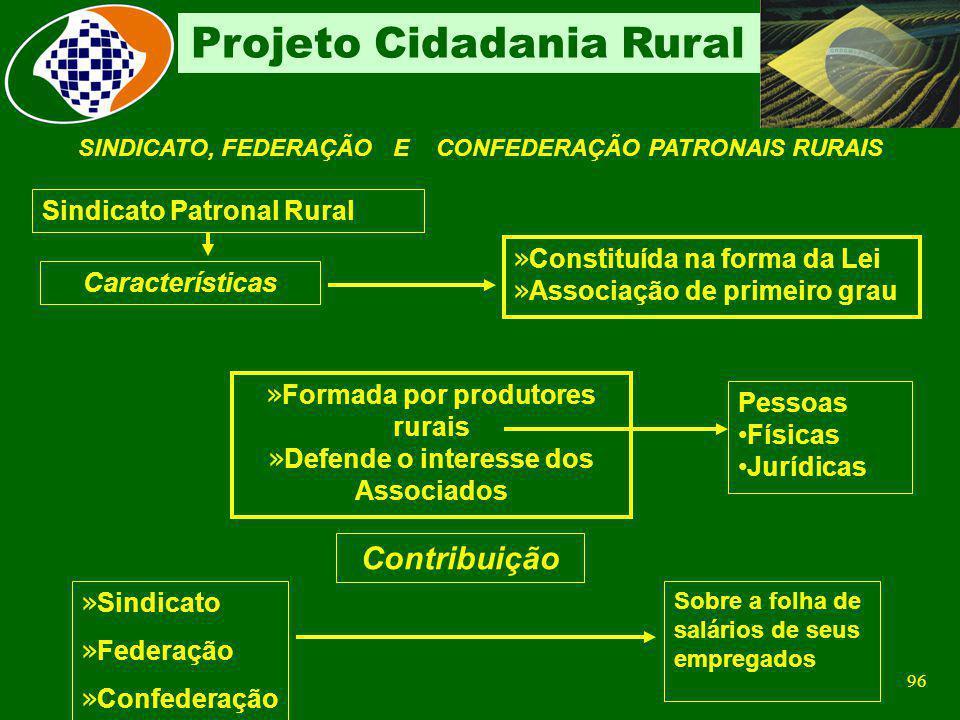 95 Projeto Cidadania Rural GFIP Prestadora de Serviços FPAS 787 FPAS 787 Campo CNPJ/CEI- matrícula CNPJ da prestadora Campo FPAS -787- Prestador de se