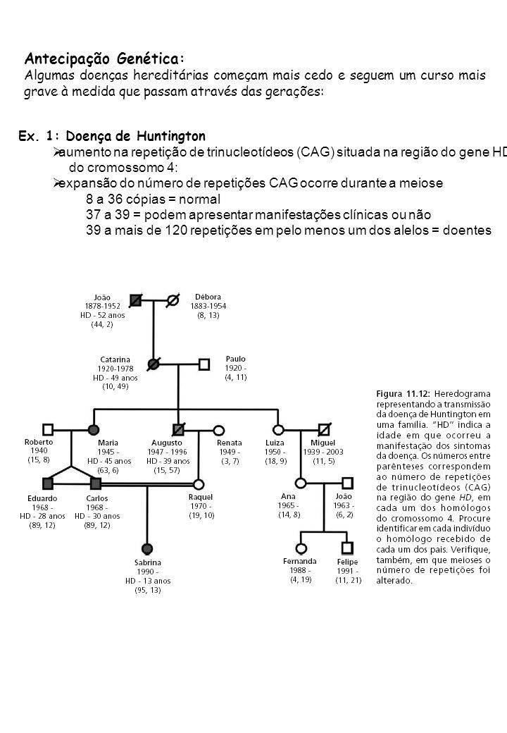 Antecipação Genética: Algumas doenças hereditárias começam mais cedo e seguem um curso mais grave à medida que passam através das gerações: Ex. 1: Doe
