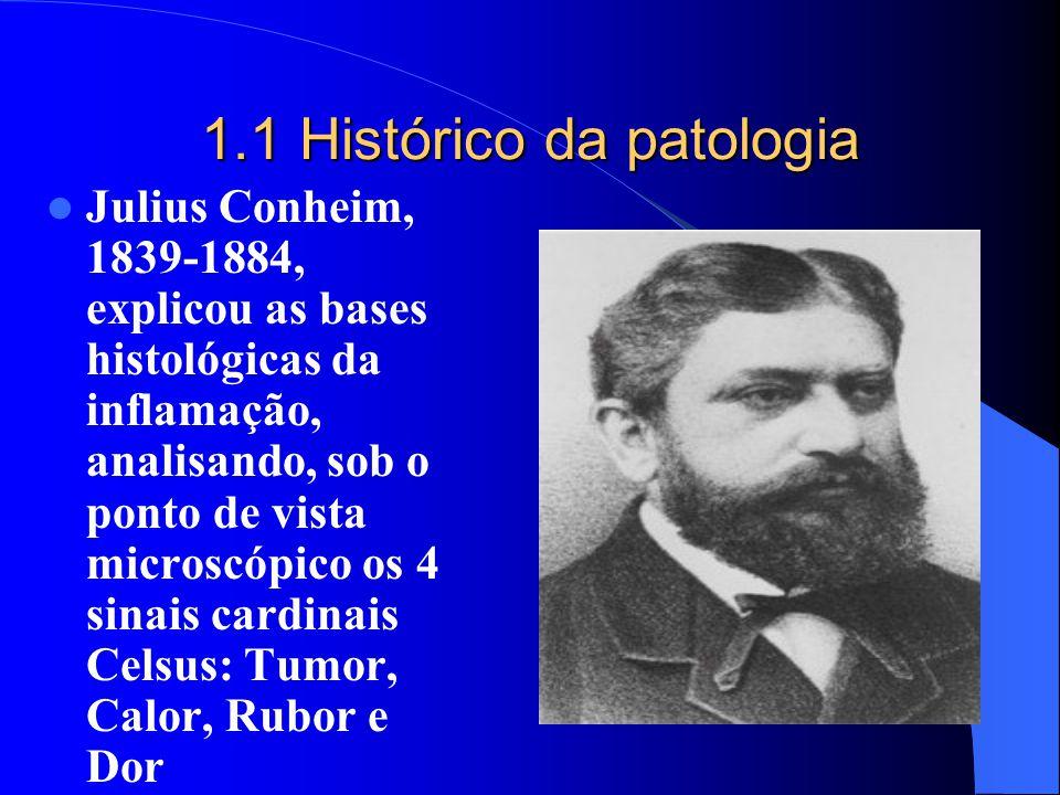 1.1 Histórico da patologia Julius Conheim, 1839-1884, explicou as bases histológicas da inflamação, analisando, sob o ponto de vista microscópico os 4
