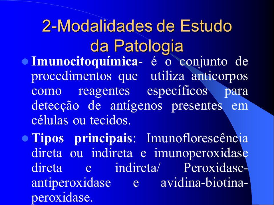 2-Modalidades de Estudo da Patologia Imunocitoquímica- é o conjunto de procedimentos que utiliza anticorpos como reagentes específicos para detecção d