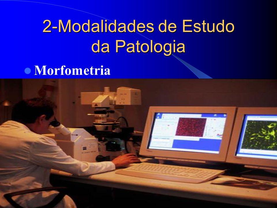 2-Modalidades de Estudo da Patologia Morfometria
