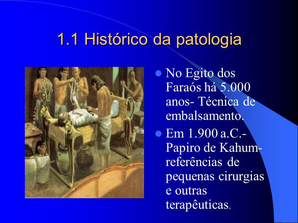 1.1 Histórico da patologia No Egito dos Faraós há 5.000 anos- Técnica de embalsamento. Em 1.900 a.C.- Papiro de Kahum- referências de pequenas cirurgi