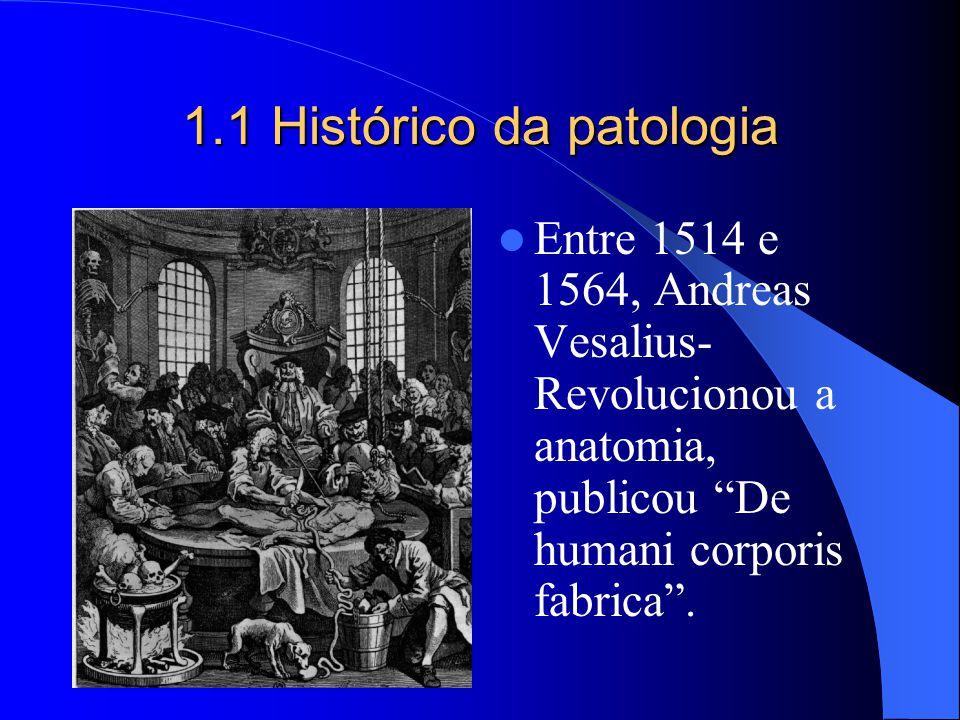 1.1 Histórico da patologia Entre 1514 e 1564, Andreas Vesalius- Revolucionou a anatomia, publicou De humani corporis fabrica.