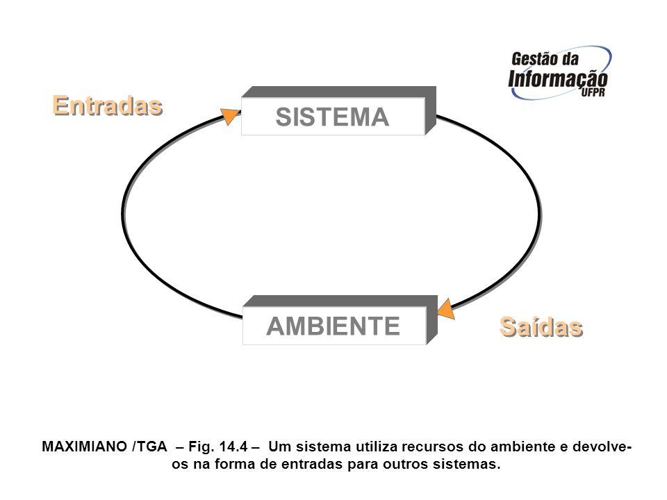 AMBIENTE SISTEMA Entradas Saídas MAXIMIANO /TGA – Fig. 14.4 – Um sistema utiliza recursos do ambiente e devolve- os na forma de entradas para outros s
