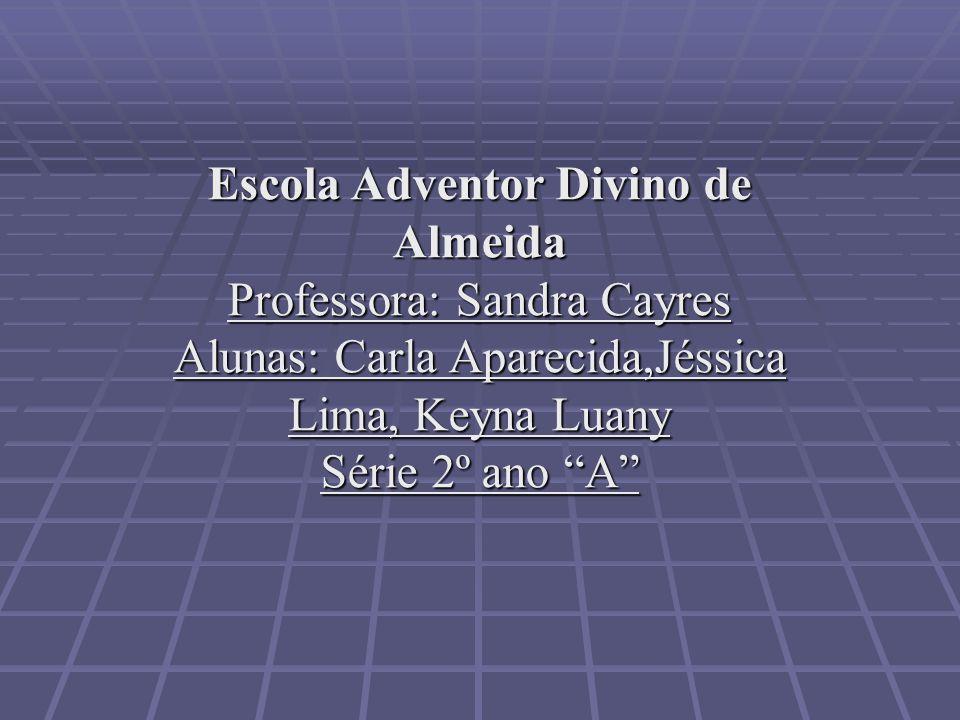 Escola Adventor Divino de Almeida Professora: Sandra Cayres Alunas: Carla Aparecida,Jéssica Lima, Keyna Luany Série 2º ano A