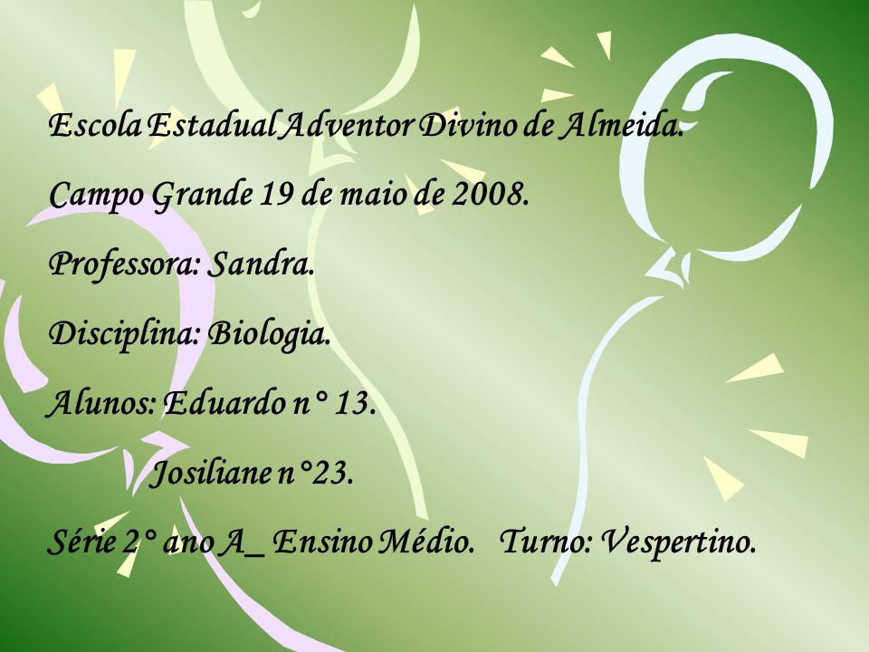 Escola Estadual Adventor Divino de Almeida. Campo Grande 19 de maio de 2008. Professora: Sandra. Disciplina: Biologia. Alunos: Eduardo n° 13. Josilian