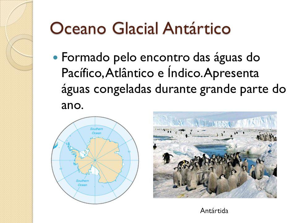 Oceano Glacial Antártico Formado pelo encontro das águas do Pacífico, Atlântico e Índico. Apresenta águas congeladas durante grande parte do ano. Antá
