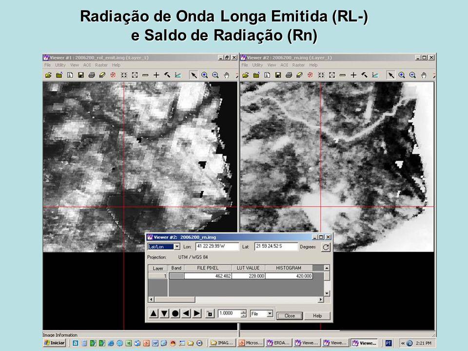 Radiação de Onda Longa Emitida (RL-) e Saldo de Radiação (Rn)