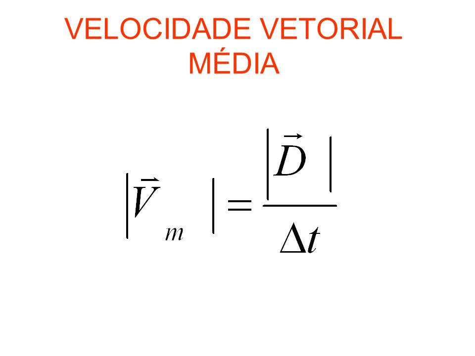 VETOR VELOCIDADE É o vetor que representa a direção e o sentido do movimento em todos os pontos da trajetória -Módulo: Direção:tangente a trajetória Sentido: o mesmo do movimento