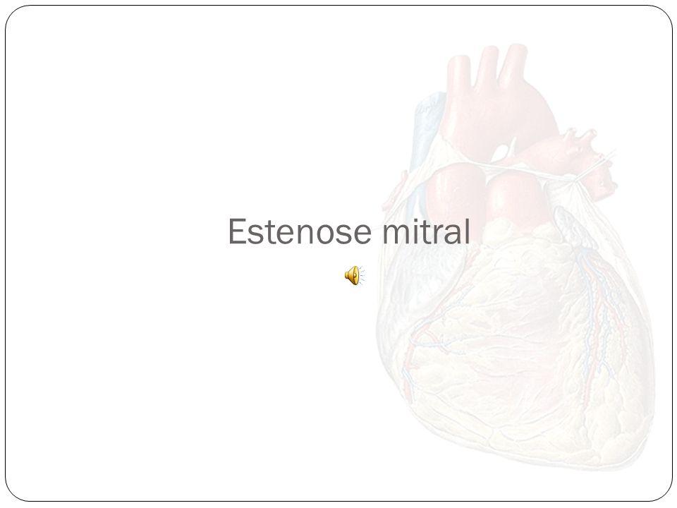 Ausculta cardíaca normal