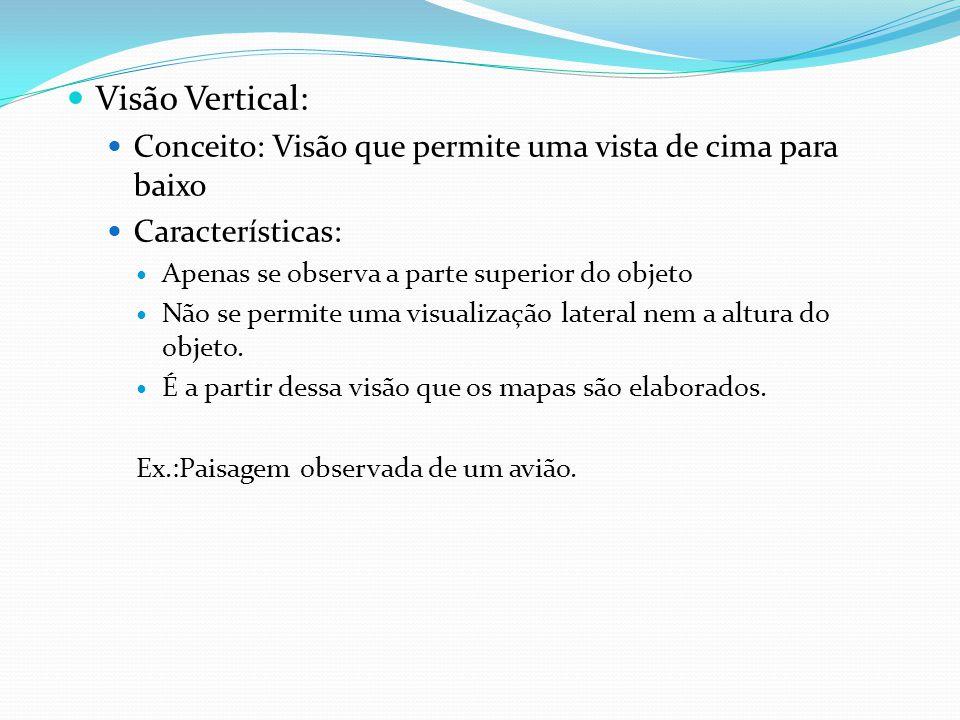Visão Vertical: Conceito: Visão que permite uma vista de cima para baixo Características: Apenas se observa a parte superior do objeto Não se permite uma visualização lateral nem a altura do objeto.