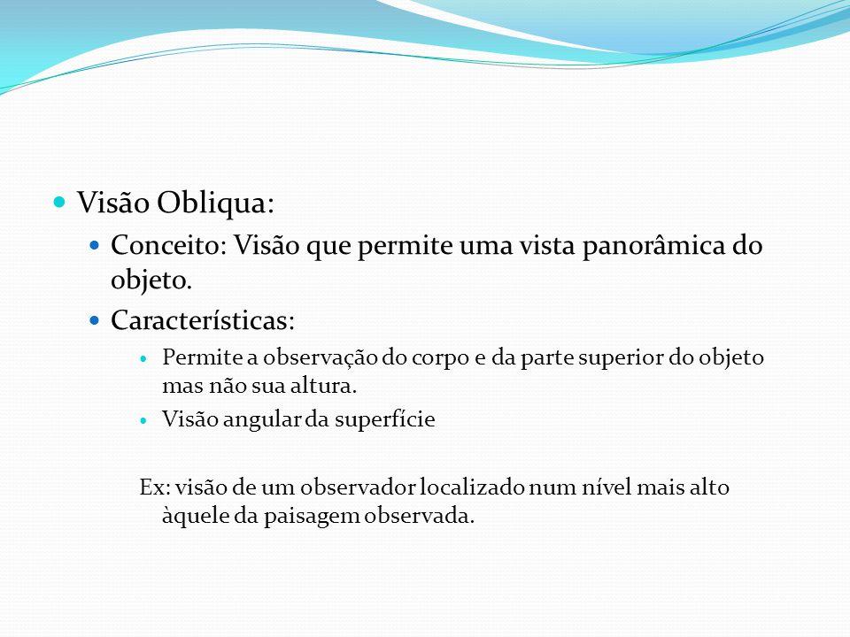 Visão Obliqua: Conceito: Visão que permite uma vista panorâmica do objeto. Características: Permite a observação do corpo e da parte superior do objet