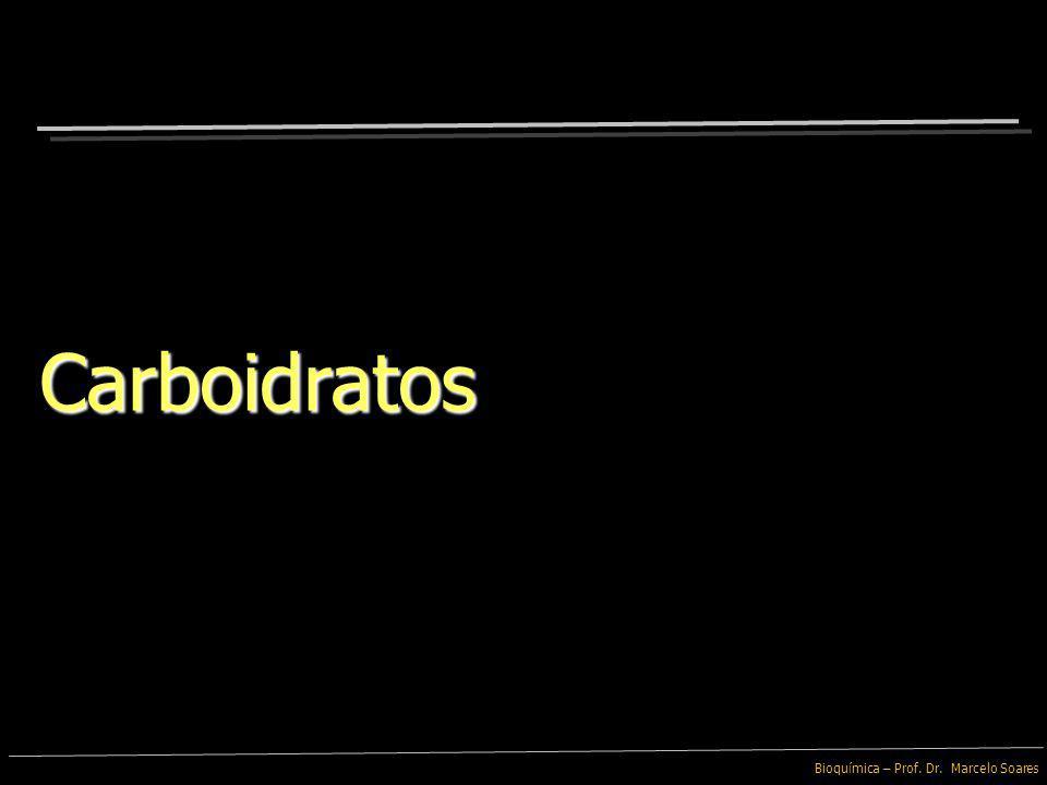 Bioquímica – Prof. Dr. Marcelo Soares Síntese por Desidratação (Condensação) Hidrólise Síntese por Desidratação (Condensação) Hidrólise Macromoléculas