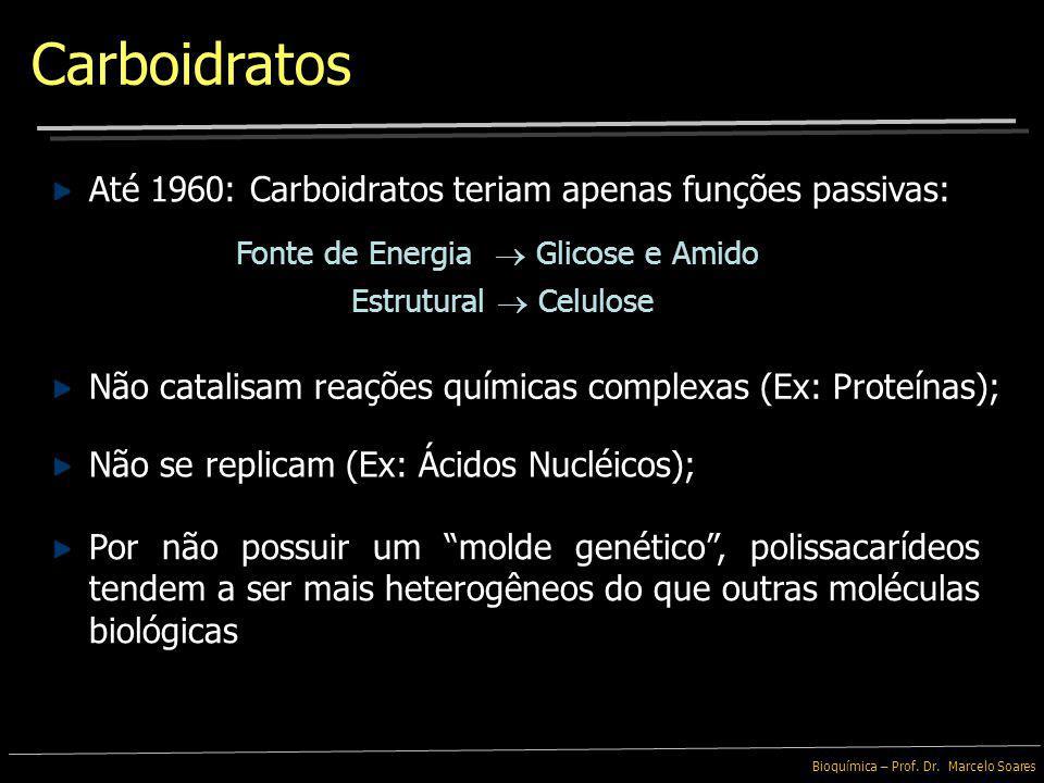 Bioquímica I – Prof. Dr. Marcelo Soares Carboidratos Carboidratos ou sacarídeos são as moléculas biológicas mais abundantes Quimicamente simples, apre