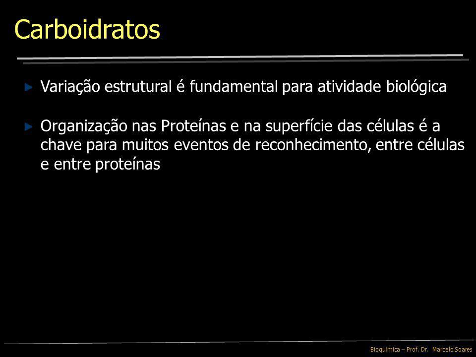 Bioquímica – Prof. Dr. Marcelo Soares Até 1960: Carboidratos teriam apenas funções passivas: Fonte de Energia Glicose e Amido Estrutural Celulose Não