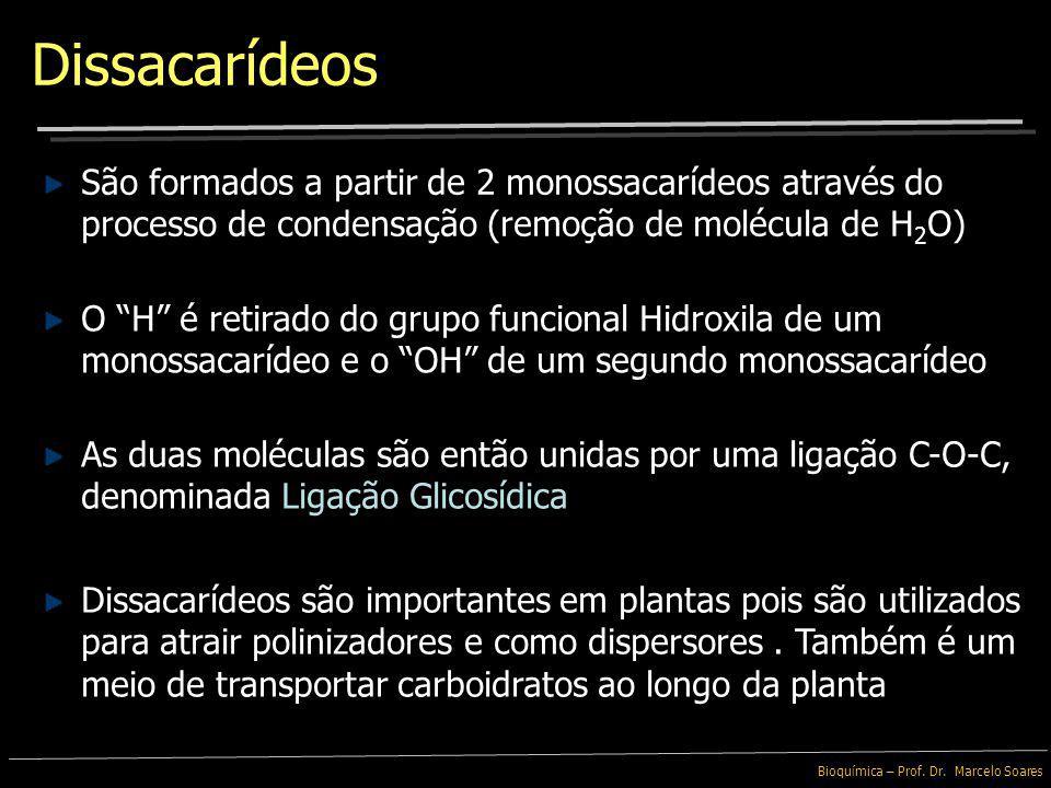 Bioquímica – Prof. Dr. Marcelo Soares Glicose