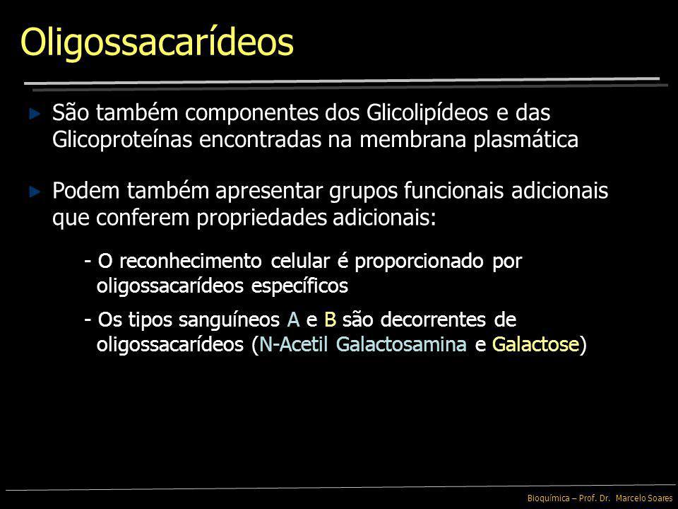 Bioquímica – Prof. Dr. Marcelo Soares Compostos por poucos Monossacarídeos ligados entre si Oligossacarídeos Legumes contém oligossacarídeos que não s