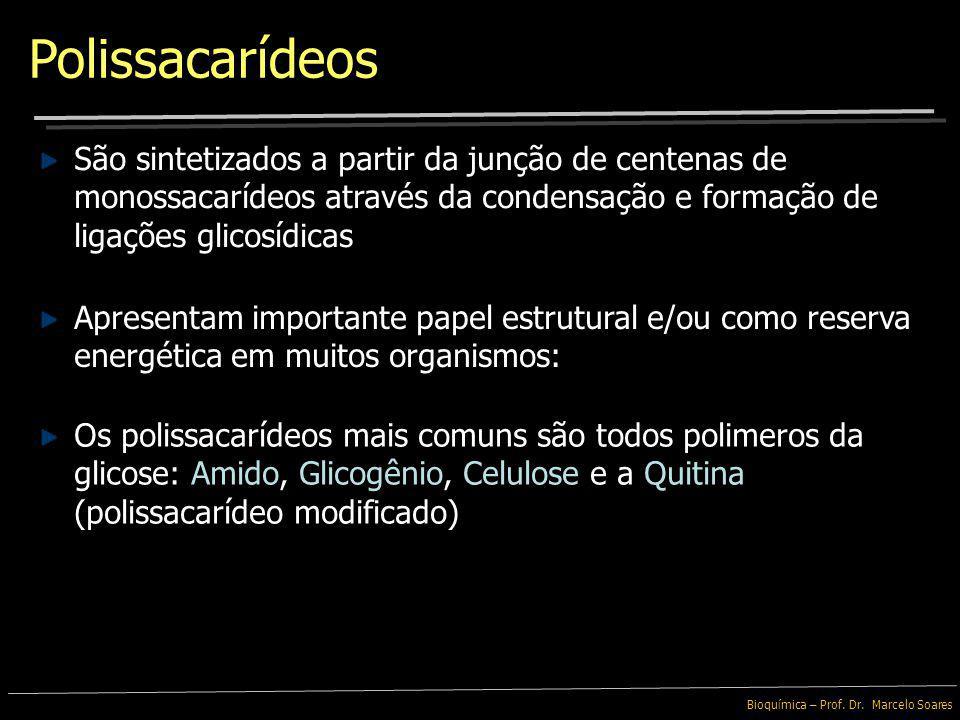 Bioquímica – Prof. Dr. Marcelo Soares São também componentes dos Glicolipídeos e das Glicoproteínas encontradas na membrana plasmática Oligossacarídeo