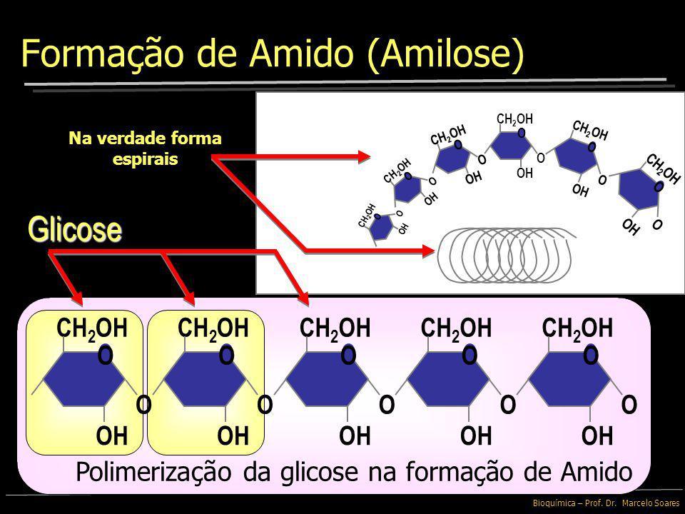 Bioquímica – Prof. Dr. Marcelo Soares Ramificação Amido