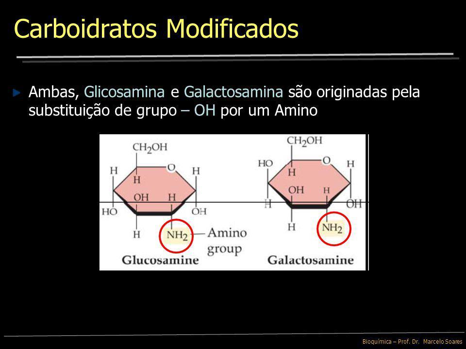 Bioquímica – Prof. Dr. Marcelo Soares Carboidratos Modificados Esses Intermediários Metabólicos incluem moléculas de açúcares fosfatados que participa