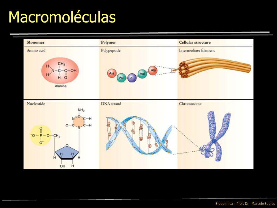 Bioquímica – Prof. Dr. Marcelo Soares Macromoléculas As funções das Macromoléculas são decorrentes de sua forma e das propriedades químicas dos monôme