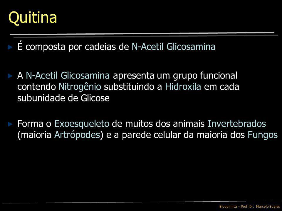 Bioquímica – Prof. Dr. Marcelo Soares Carboidratos Modificados Ambas, Glicosamina e Galactosamina são originadas pela substituição de grupo – OH por u