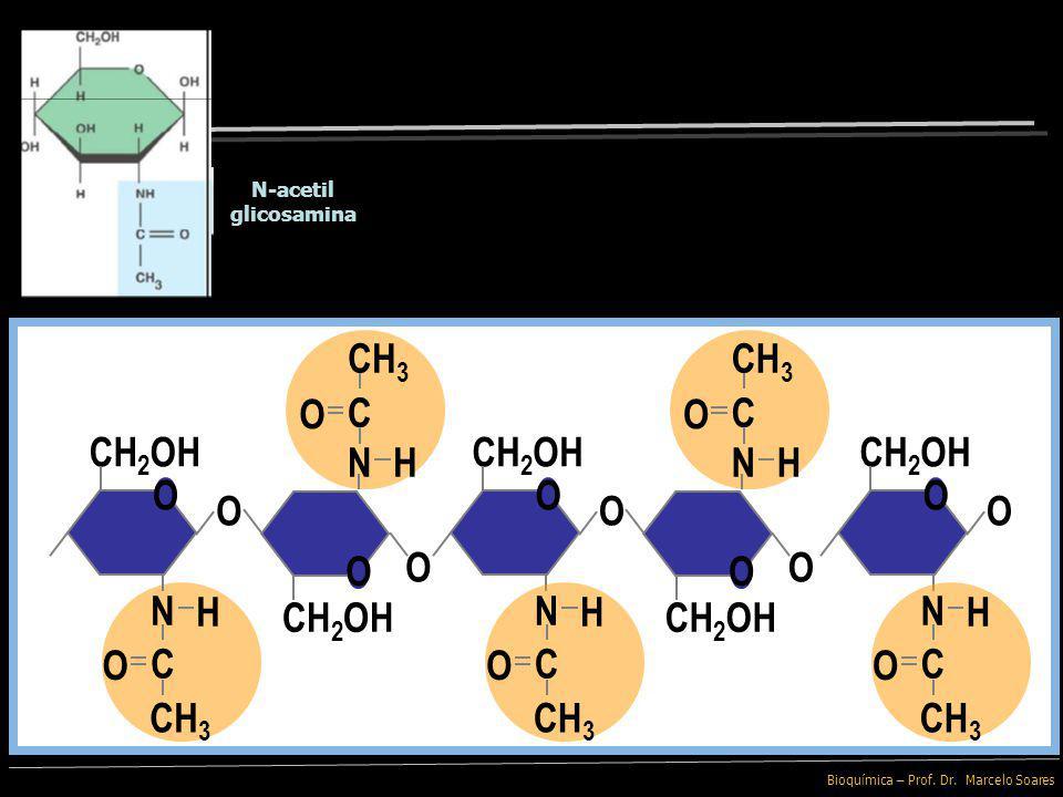 Bioquímica – Prof. Dr. Marcelo Soares Quitina A N-Acetil Glicosamina apresenta um grupo funcional contendo Nitrogênio substituindo a Hidroxila em cada
