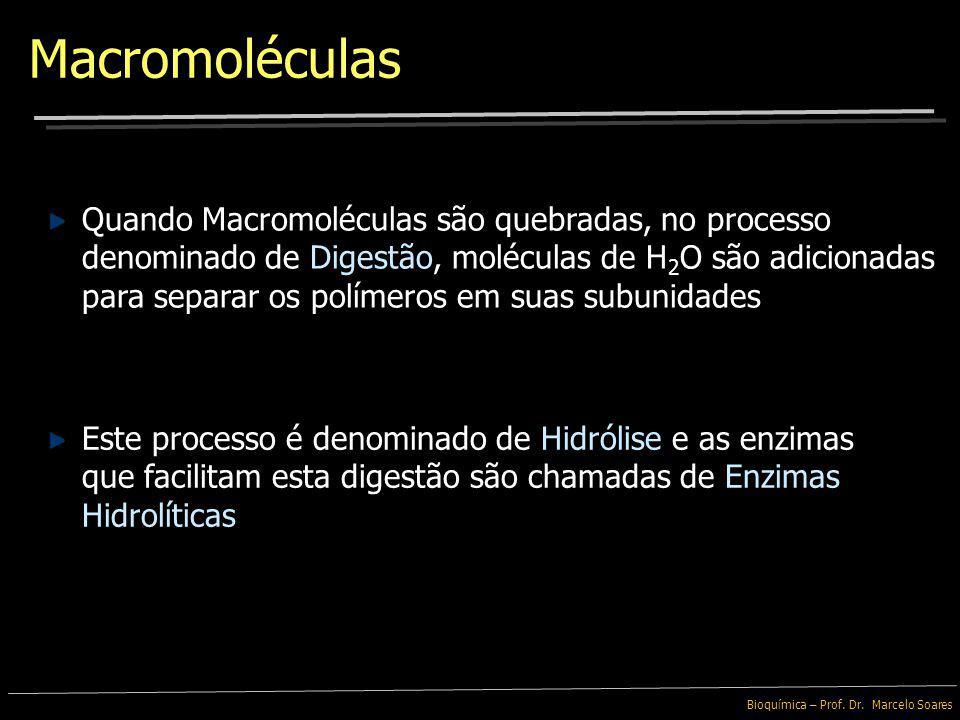 Bioquímica – Prof. Dr. Marcelo Soares Macromoléculas A maioria das Macromoléculas são produzidas ou são quebradas pelo mesmo tipo de reação química Es