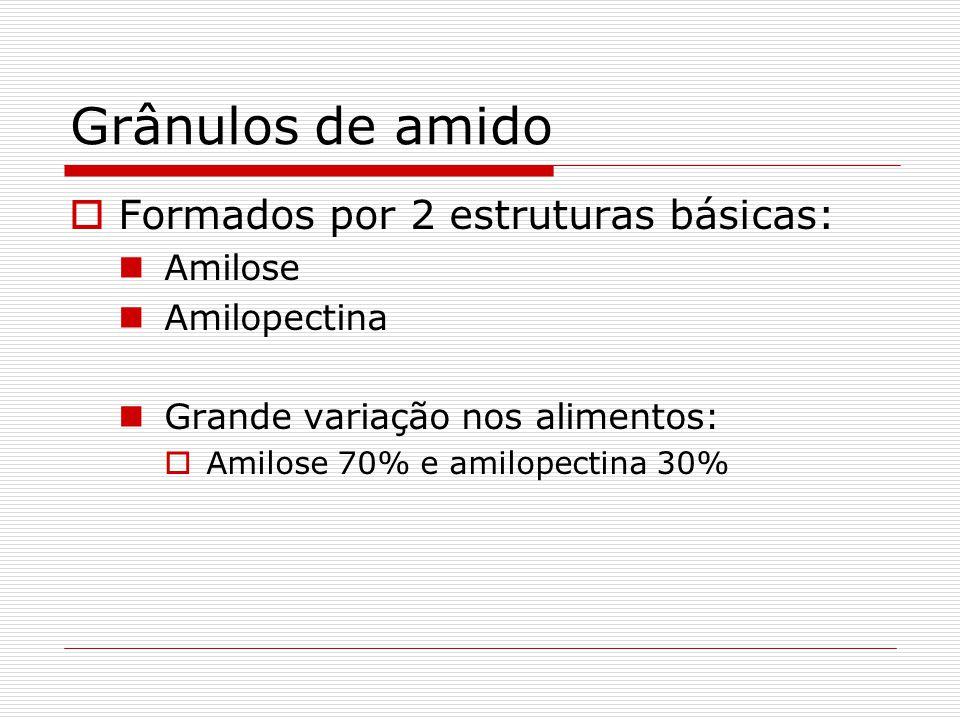 Amido Está presente na maioria dos vegetais Função Vantagem Armazenamento: grânulos no citoplasma Os grânulos de amido consiste de dois carboidratos p