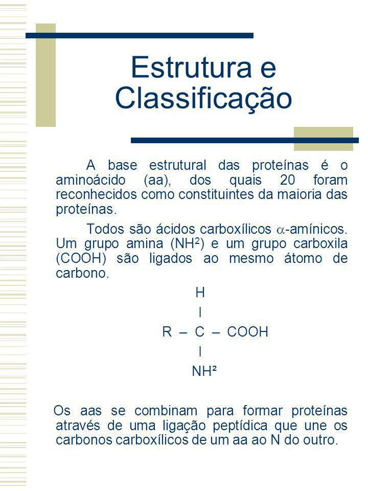 Estrutura e Classificação A base estrutural das proteínas é o aminoácido (aa), dos quais 20 foram reconhecidos como constituintes da maioria das prote