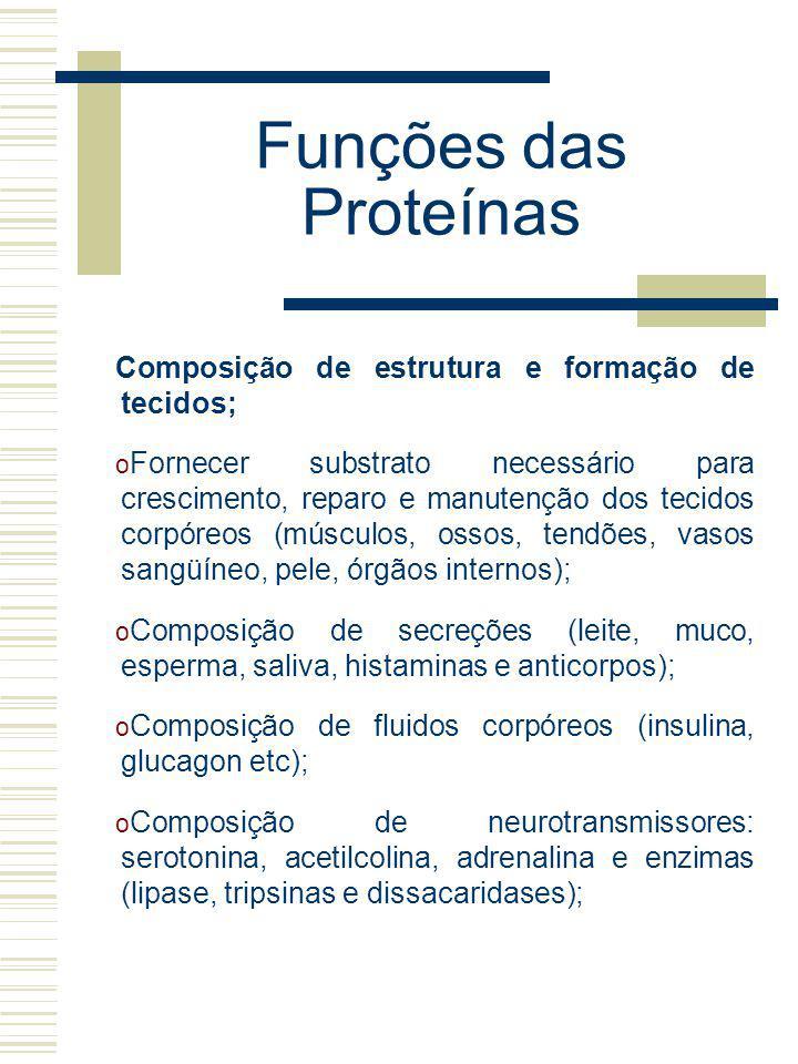 Funções das Proteínas Composição de estrutura e formação de tecidos; o Fornecer substrato necessário para crescimento, reparo e manutenção dos tecidos