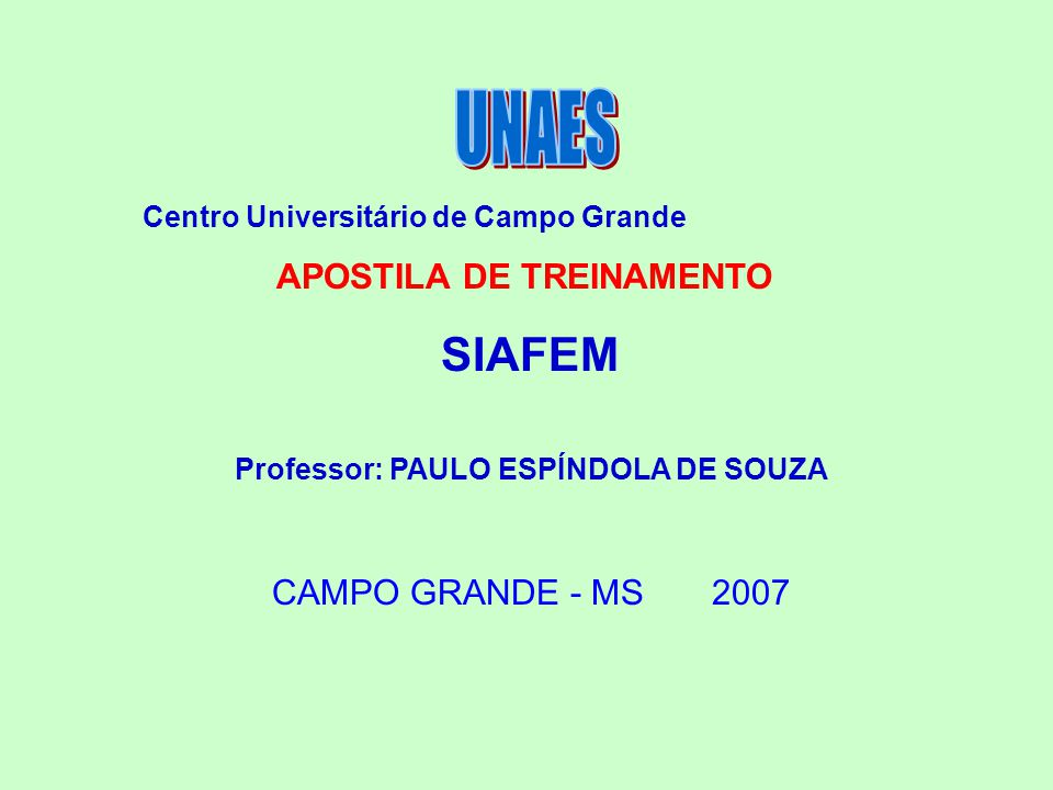 Centro Universitário de Campo Grande APOSTILA DE TREINAMENTO SIAFEM Professor: PAULO ESPÍNDOLA DE SOUZA CAMPO GRANDE - MS 2007