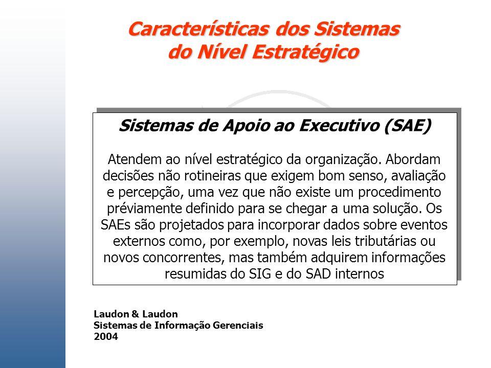 Características dos Sistemas do Nível Estratégico Sistemas de Apoio ao Executivo (SAE) Atendem ao nível estratégico da organização. Abordam decisões n