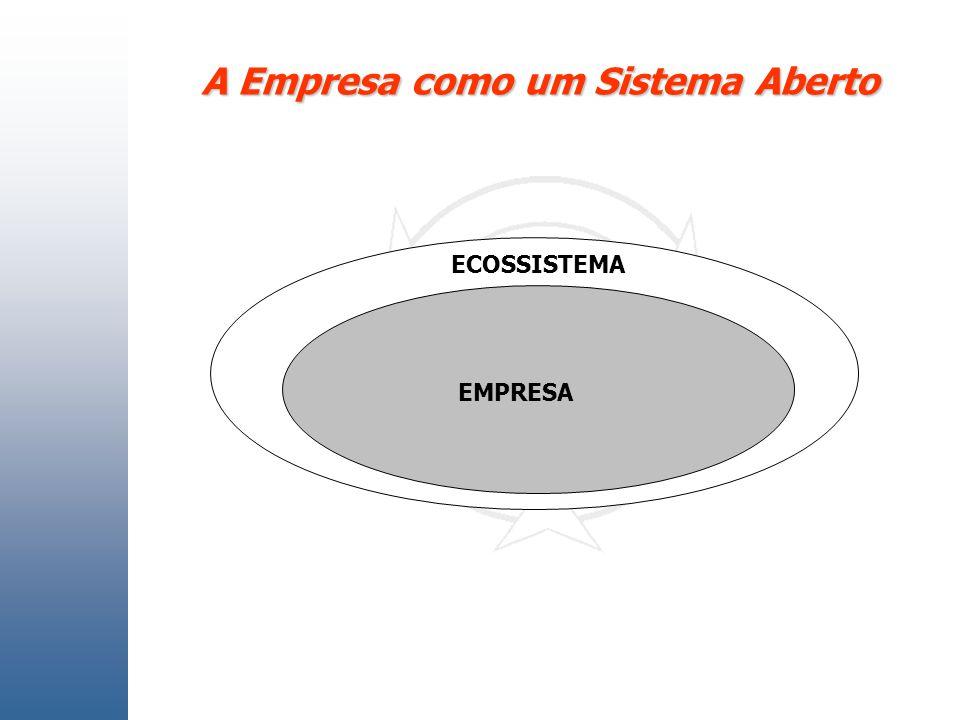 A Empresa como um Sistema Aberto ECOSSISTEMA EMPRESA