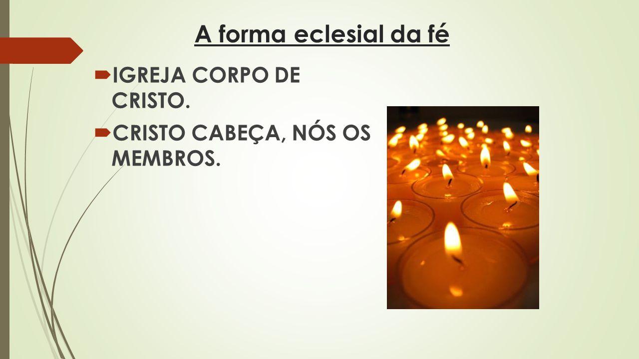 A forma eclesial da fé IGREJA CORPO DE CRISTO. CRISTO CABEÇA, NÓS OS MEMBROS.