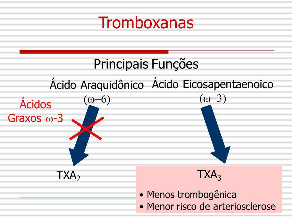 TXA 2 Ácidos Graxos -3 Ácido Araquidônico TXA 3 Menos trombogênica Menor risco de arteriosclerose Tromboxanas Principais Funções Ácido Eicosapentaenoi