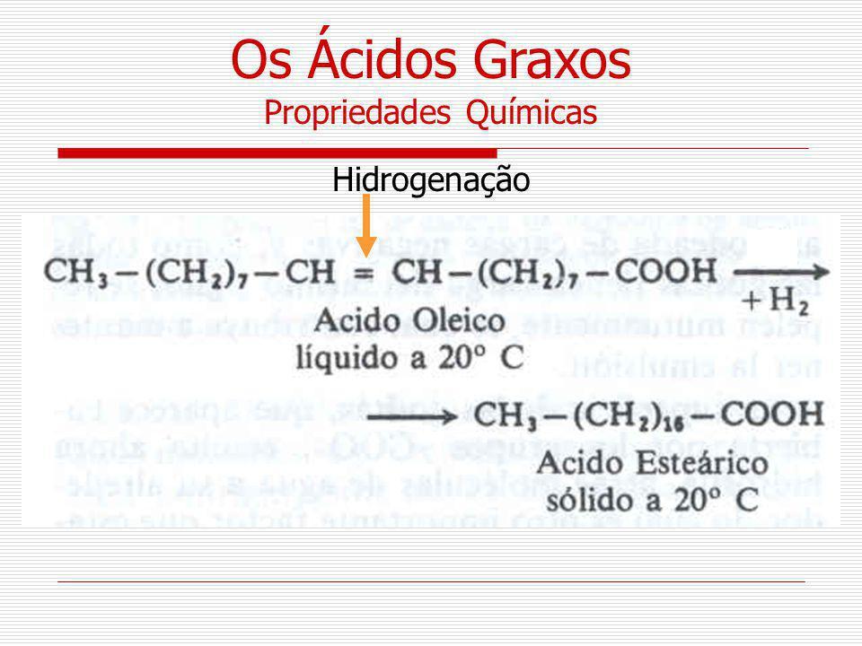 Hidrogenação Propriedades Químicas Os Ácidos Graxos