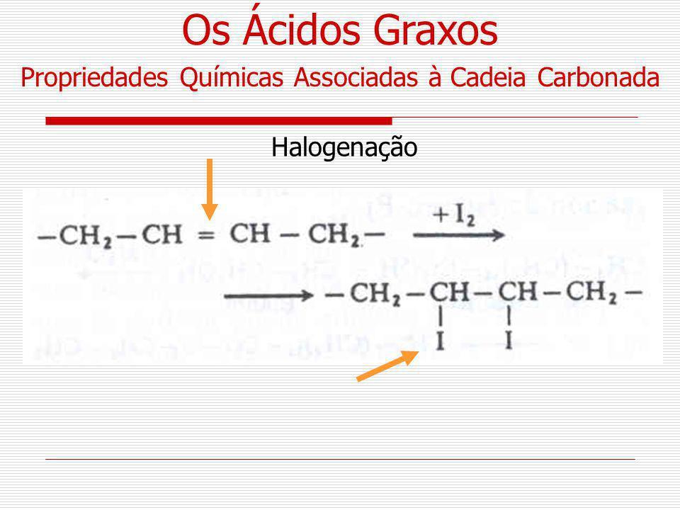 Halogenação Propriedades Químicas Associadas à Cadeia Carbonada Os Ácidos Graxos
