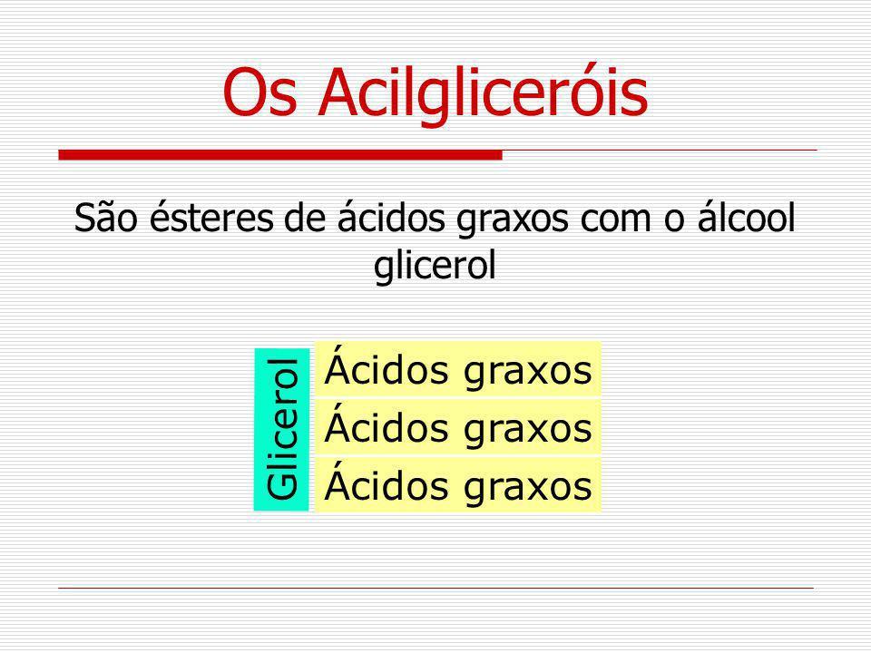 Os Acilgliceróis São ésteres de ácidos graxos com o álcool glicerol Glicerol Ácidos graxos