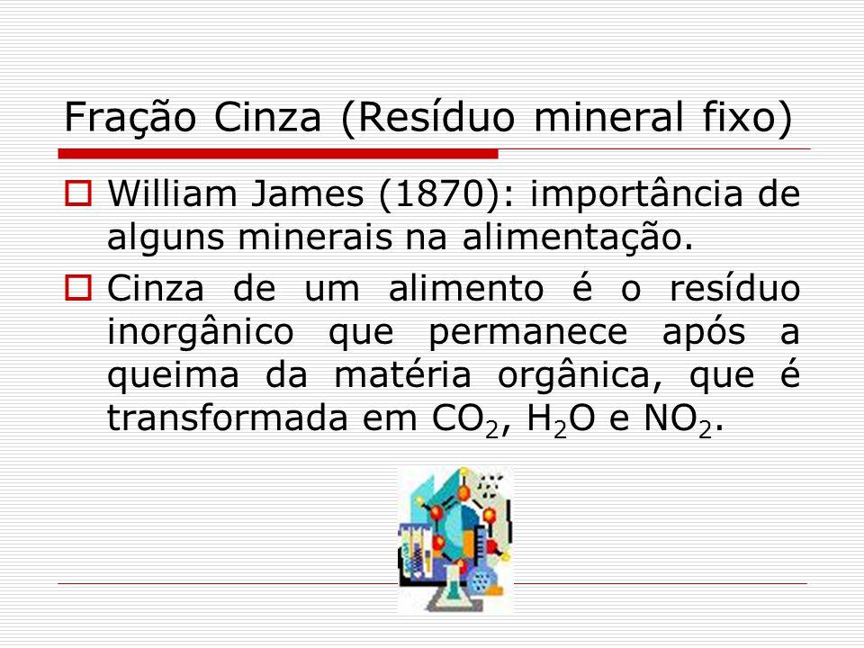 Fração Cinza (Resíduo mineral fixo) William James (1870): importância de alguns minerais na alimentação. Cinza de um alimento é o resíduo inorgânico q