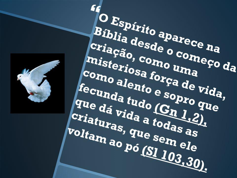 O Espírito aparece na Bíblia desde o começo da criação, como uma misteriosa força de vida, como alento e sopro que fecunda tudo (Gn 1,2), que dá vida a todas as criaturas, que sem ele voltam ao pó (Sl 103,30).