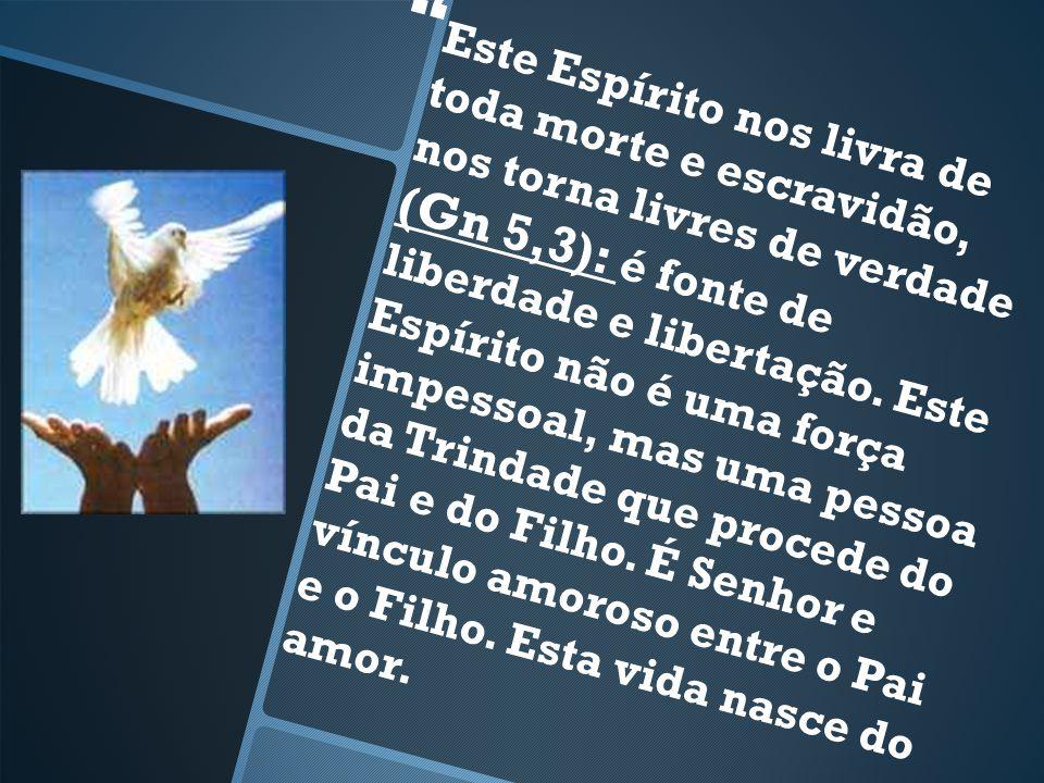 Este Espírito nos livra de toda morte e escravidão, nos torna livres de verdade (Gn 5,3): é fonte de liberdade e libertação.