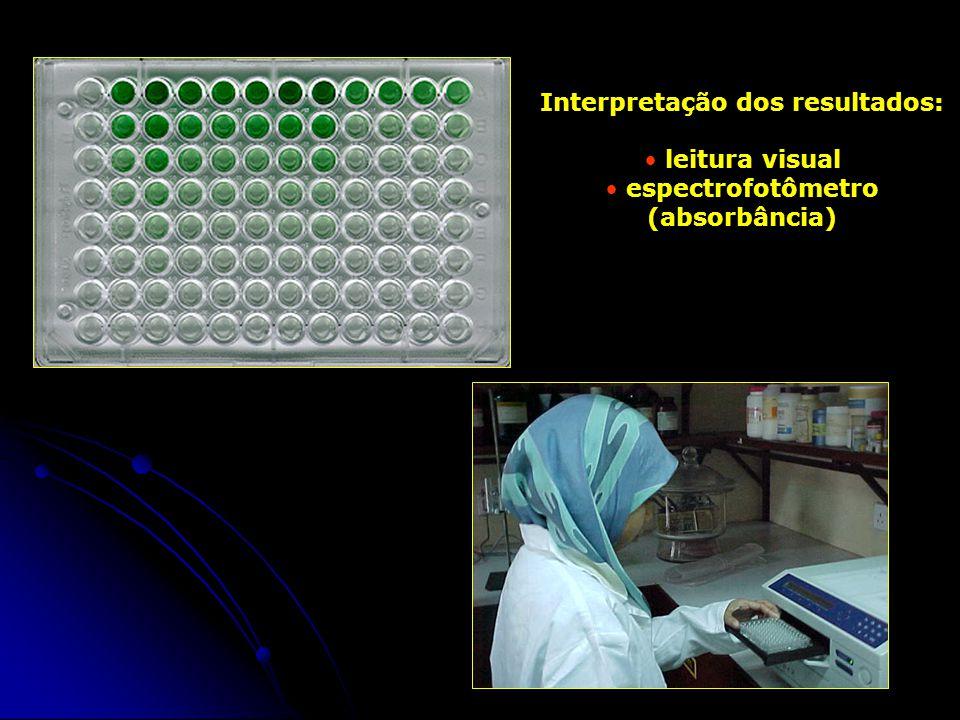 Interpretação dos resultados: leitura visual espectrofotômetro (absorbância)